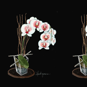 White Orchids, Gallery Black