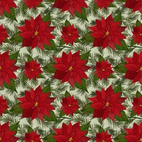 Poinsettias and Evergreen