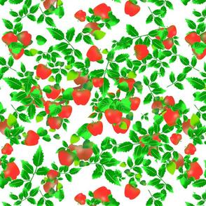 Apple_Orchard