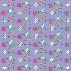 Pink Poinsettias, Small Print
