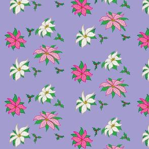 Pink and White Poinsettias