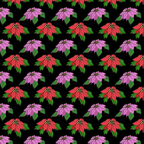 pink_and_red_poinsettias
