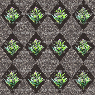 Textured Cannabis Diamond Tiles