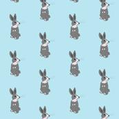 Obstinate Rabbit