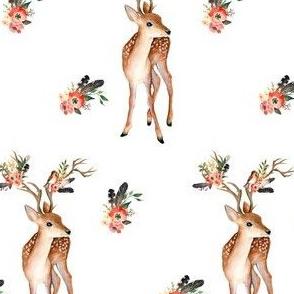 Western Aztec Deer