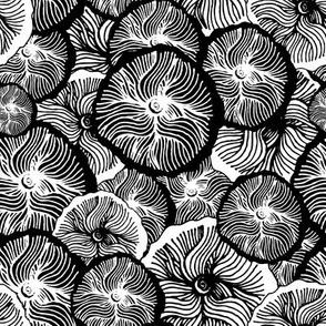 Monochrome flowers