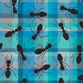 picnic ants in twilight