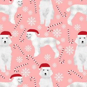 poodles fabric cute poodle christmas designs xmas holiday candy canes fabric cute fabric