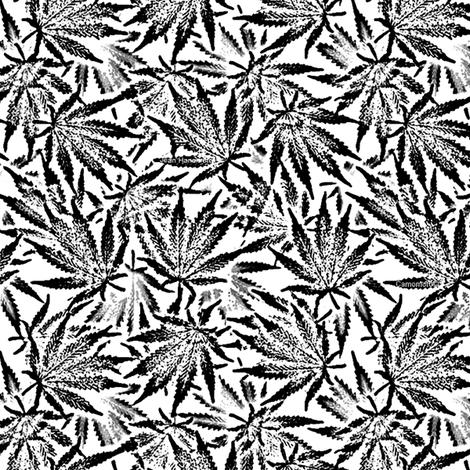 B&W Ganja Leaves fabric by camomoto on Spoonflower - custom fabric