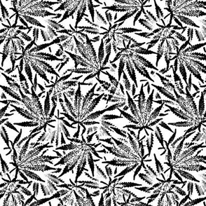 B&W Ganja Leaves