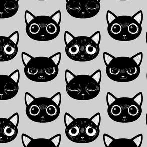 Black Cat Expression
