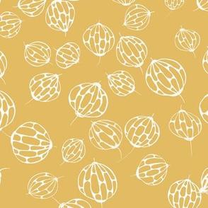 ballflower yellow