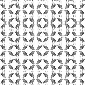 Caw Caw White Tiny Circles