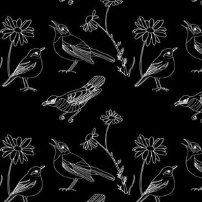 Birds and Daisies (drawing, white on black)
