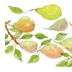 Summer Pears