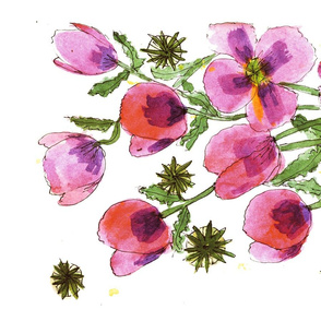 Pink & Lavender Poppies 1
