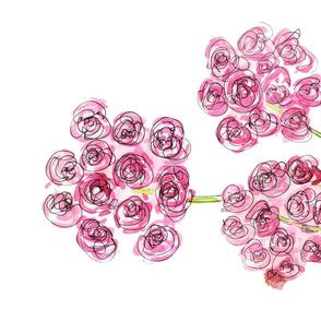 Pink Geraniums1