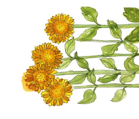 Sunflowers_tt_shop_preview
