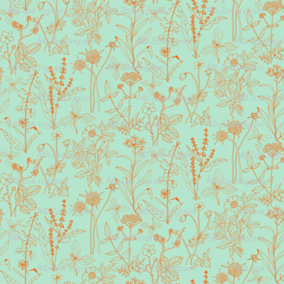 Scottish Wildflowers 1 - Mint