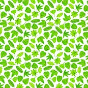Rgouache_leaves_template_8in_shop_thumb
