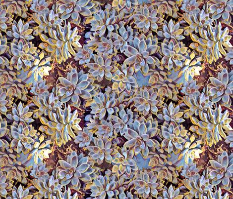 succulents kapahulu candy fabric by studiozandra on Spoonflower - custom fabric
