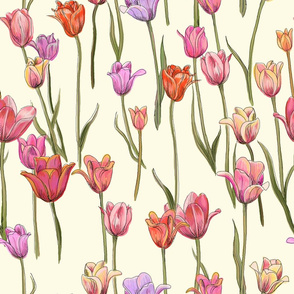 dutch tulips-pink and red on ivory