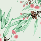 Gumnuts Eucalyptus Chalk Green Pink Pastel