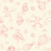 shells - peaches and cream