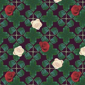 war_of_the_roses_on_aubergine