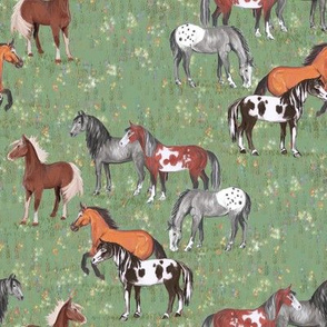 Horses in Wildflower field