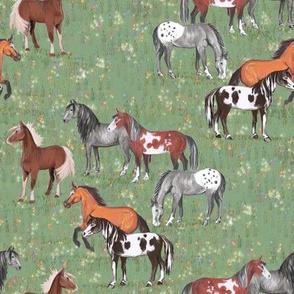 Horses in Wildflower field