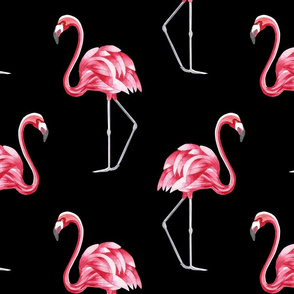 Vintage flamingo on black