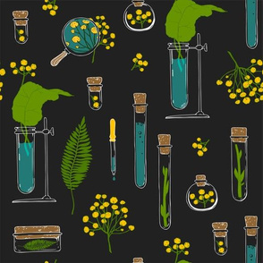 Plants and tubes on a black background