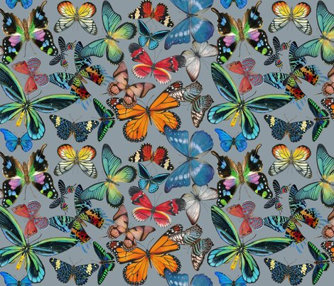 Rbutterfly_bounty__no_flowers_on_gray_copy_shop_preview