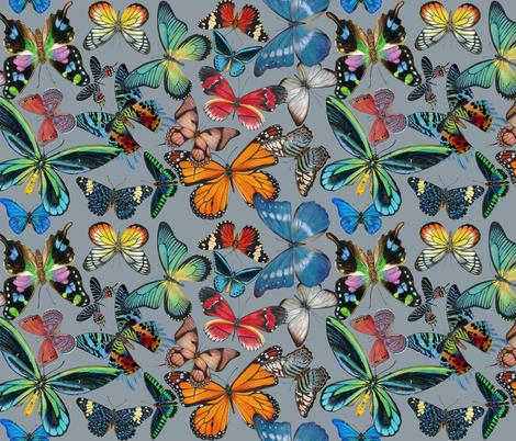 Butterfly Bounty on Gray fabric by angelaanderson on Spoonflower - custom fabric
