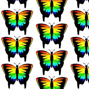 Rainbow Butterfly 1