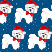 Christmas Bichon Frise with red bow and santa hat