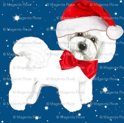 Santa // Christmas dog,  Bichon Frise // dog // with red bow and santa hat