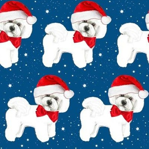 Santa // Christmas dog,  Bichon Frise // dog // with red bow and santa hat