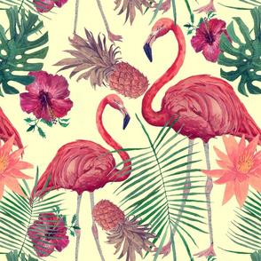 Flamingo dreams.