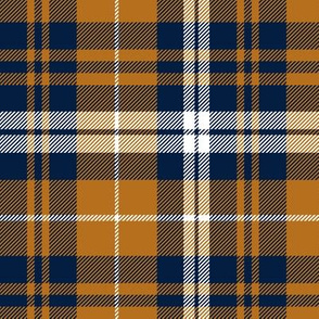 fall plaid || cider and navy