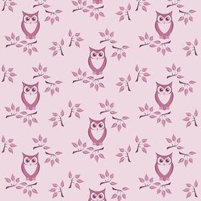 cute owl 3