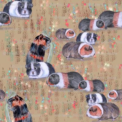 Guinea Pig Conga Line