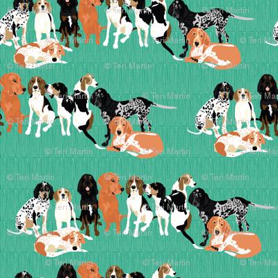 coonhound-row