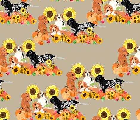 Rcoonhound-autumn_shop_preview