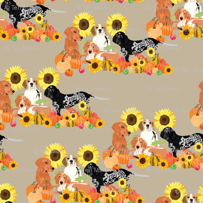 coonhound-autumn