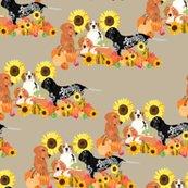 Rrcoonhound-autumn_shop_thumb