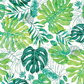 Monstera Fronds