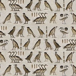 Egyptian birds hieroglyph