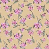 Alpine Rose Soft